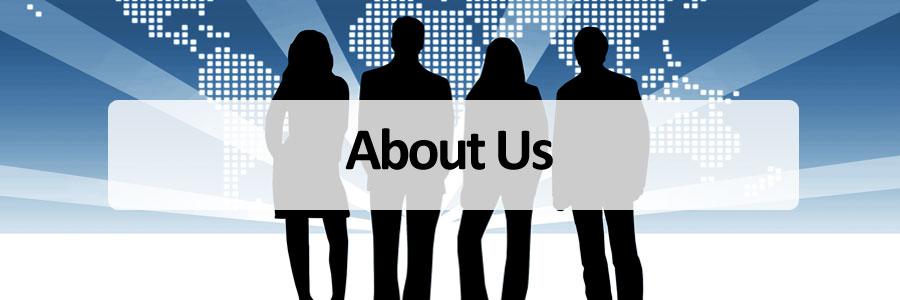 About SA Info Technologies